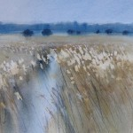 Sara Johnson, 'Minsmere Reeds'