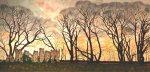 suelaughlin-south-elmham-minster