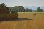 barbara-bernard-mazeres-france-oil-on-board-26cmx36cm
