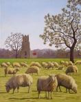 barbara-bernard-sheep-at-broome-church-oil-on-canvas-60cmx40cm