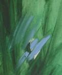 kath-wallace-waveney-grasses-oilonboard-12x17cm