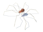 anne-steel-sculpture-large-spider