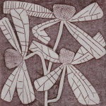 liz-taunt-dragon-flower-dryprint-12x12cm